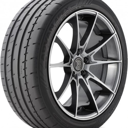 Max Performance Summer Tire