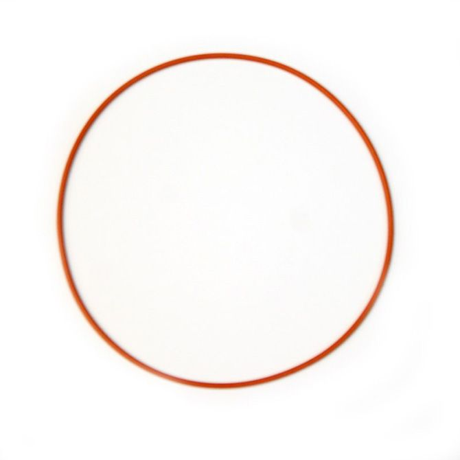 Nitrous Replacement O-ring gasket for Coyote Plate